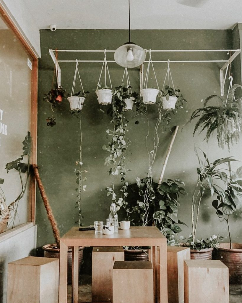 Wooden table and chairs accompanied with hanging plants