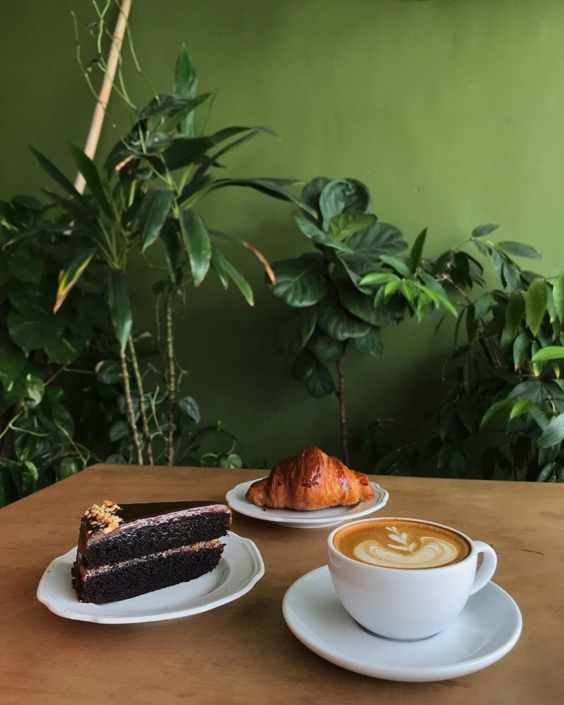 Slice cake, croissant and coffee next to plants
